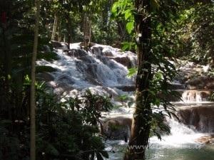 cascate dunn's river falls