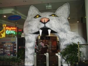 Cat_Museum-1