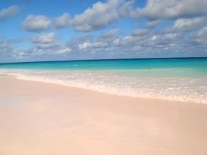 Pink_Sands_Bahamas