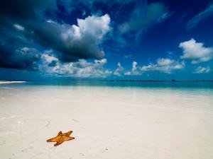 Playa_Paraiso_Cuba