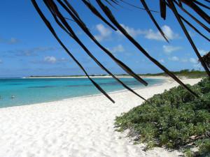 loblolly_beach
