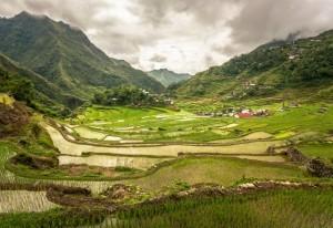 Terrazze di riso a Bali, Indonesia
