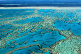 Vista dall'alto della grande barriera corallina, Queensland, Australia