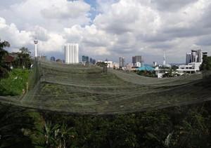 Vista dall'alto della zona Flight Zone del KL Bird Park di Kuala Lumpur, Malesia