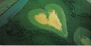 Voh Heart e mangrovie, Nuova Caledonia