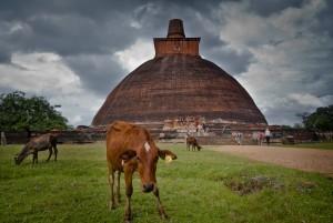 Anuradhapura 1, Sri Lanka