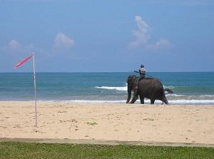 Bentota 1, Sri Lanka