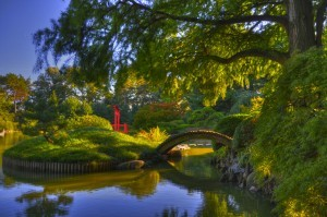 Brooklyn Botanical Garden, New York 3