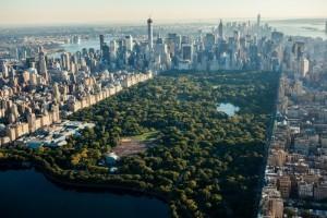 Central Park, New York 3