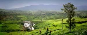 Hillcountry nei dintorni di Nuwara Eliya, Sri Lanka