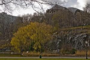 Morningside Park, New York 1