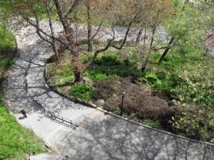 Morningside Park, New York 2
