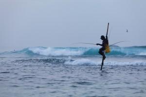Pescatore su trampo, Sri Lanka