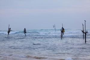 Pescatori su trampoli a Koggala, Sri Lanka