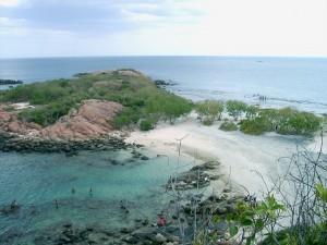 Pigeon Island vicino a Trincomalee, Sri Lanka