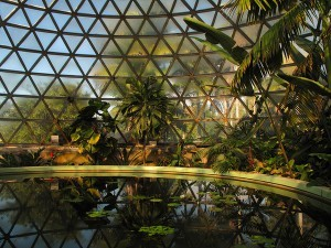 Tropical Display Dome, Brisbane