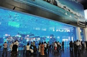 Dubai Mall 1, Dubai