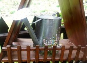 Orto botanico il giardino dei semplici - Zuglio (1)