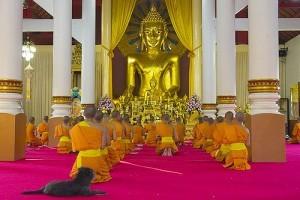 Lion Buddha al Wat Phra Singh 2, Thailandia