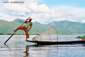 Pescatore sul lago Inle 4, lago Inle