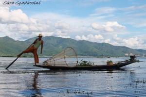 Pescatore sul lago Inle 5, lago Inle