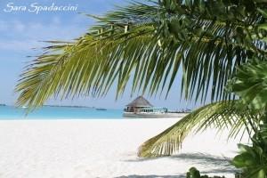 Stupenda spiaggia dell'hotel 1, Maldive 2013