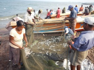 Reti da pesca in Sri Lanka
