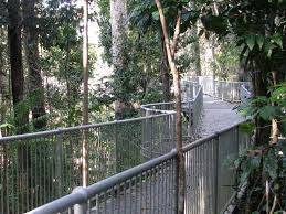 Mamu Rainforest Canopy Walkway, Australia